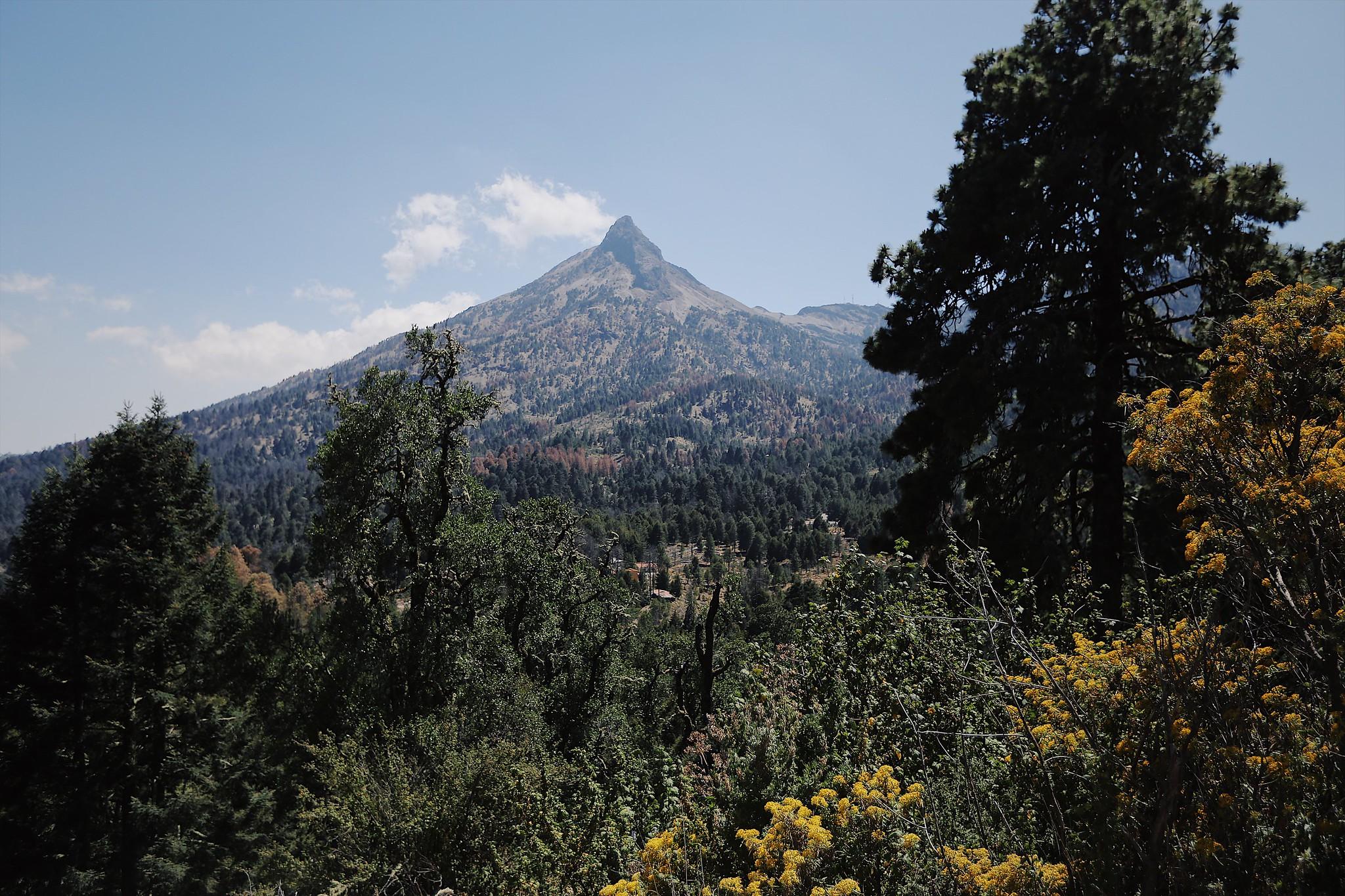 Cierran Parque Nacional Nevado de Colima y Bosque La Primavera por COVID-19