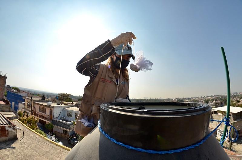 Redoblan trabajos contra el dengue en Lomas de Tabachines en Zapopan