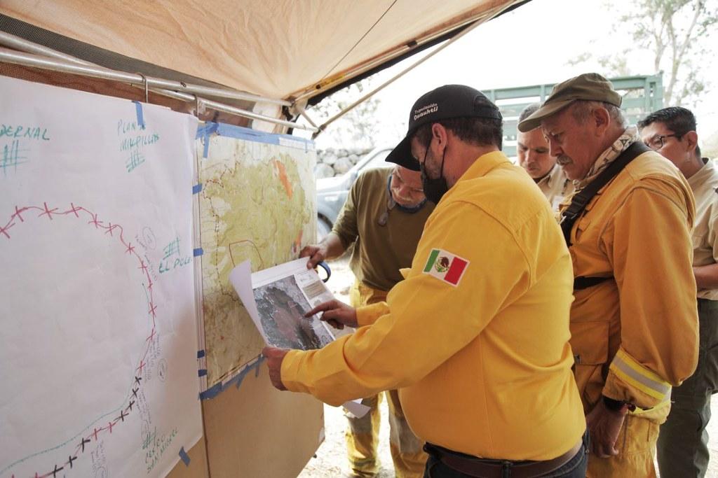 Trabajan tres niveles de gobierno para controlar incendio forestal en La Primavera