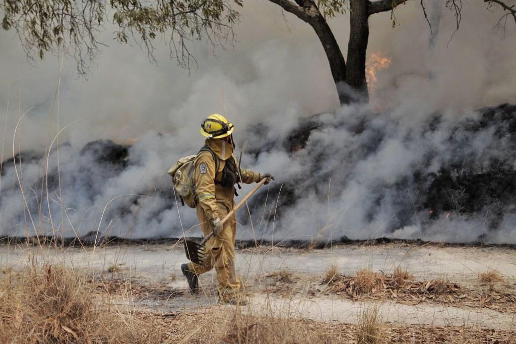 Incendio en Bosque La Primavera registra 80 por ciento en avance de control