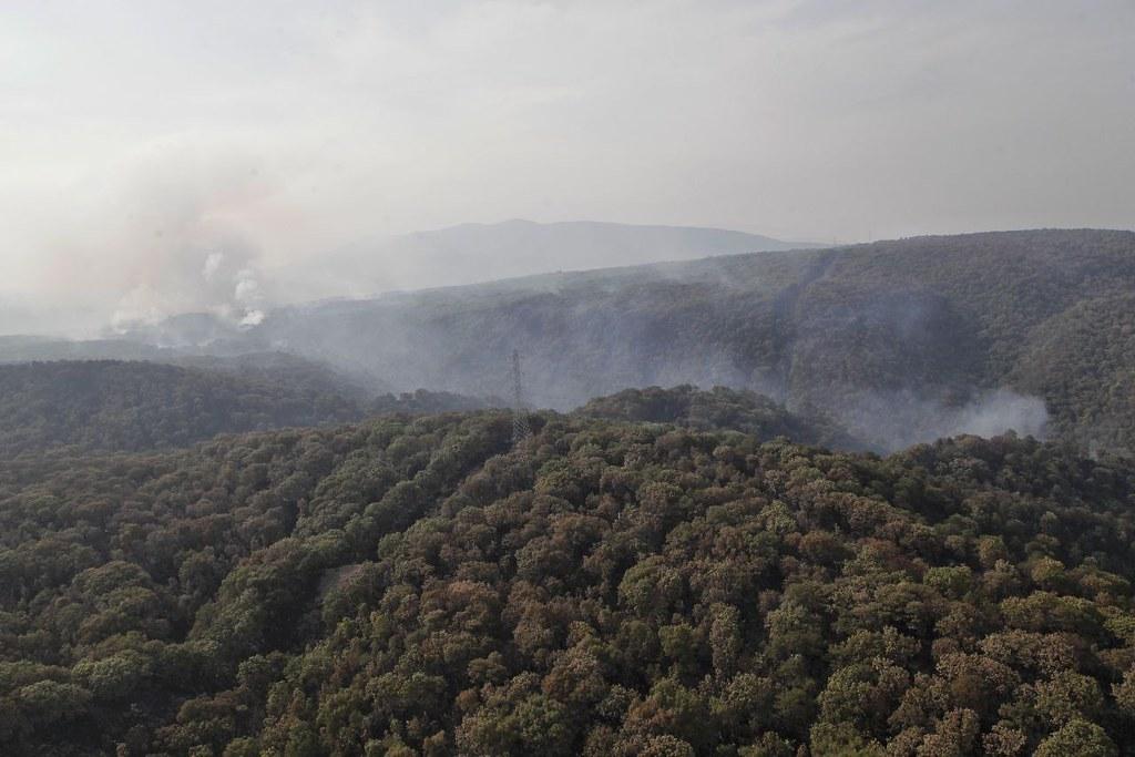 Se controla incendio forestal en La Primavera