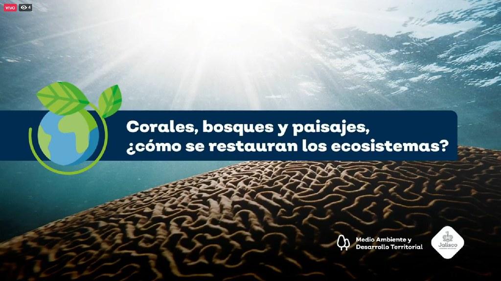 Dialoga Semadet sobre restauración de ecosistemas por el Día Mundial del Medio Ambiente