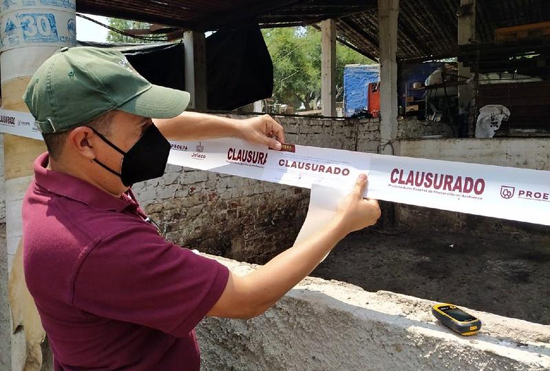 Clausura Proepa granja porcícola en Zapotlanejo por el inadecuado manejo de sus residuos