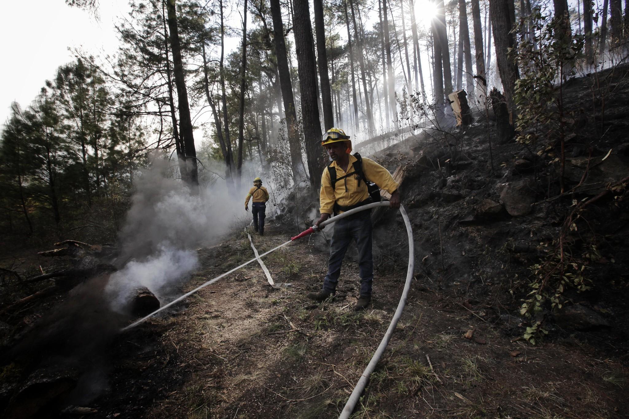 Jalisco reconoce labor de combatientes forestales