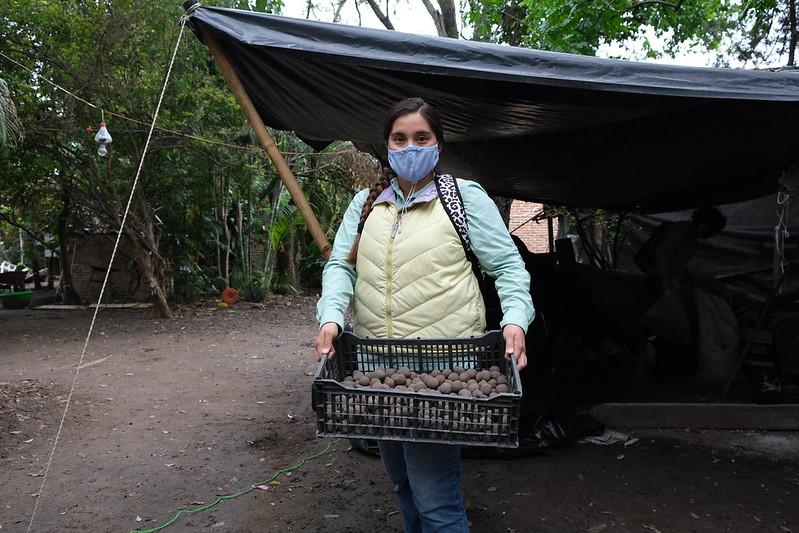Lanzan bolas de arcilla con semillas en Áreas Naturales Protegidas