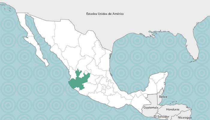Presentacin  Gobierno del Estado de Jalisco