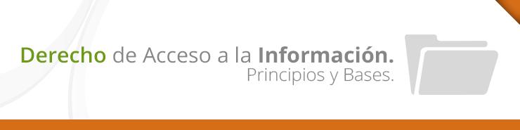 Derecho de Acceso a la Información. Principios y Bases.