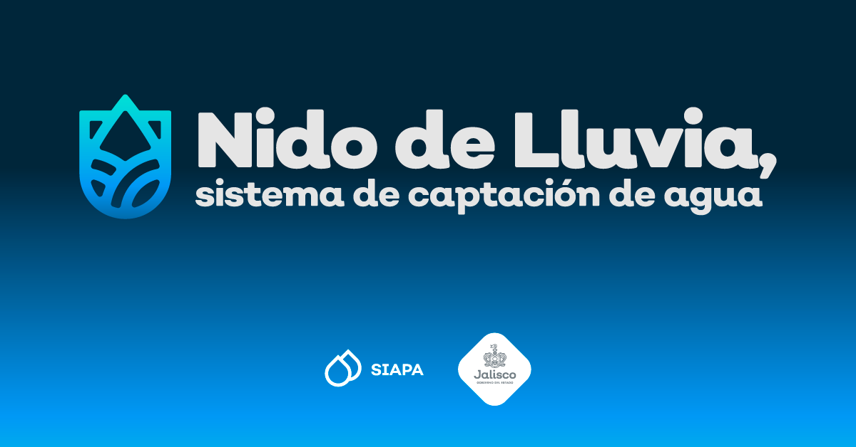 Nido de Lluvia, una nueva forma de abastecimiento de agua en Jalisco