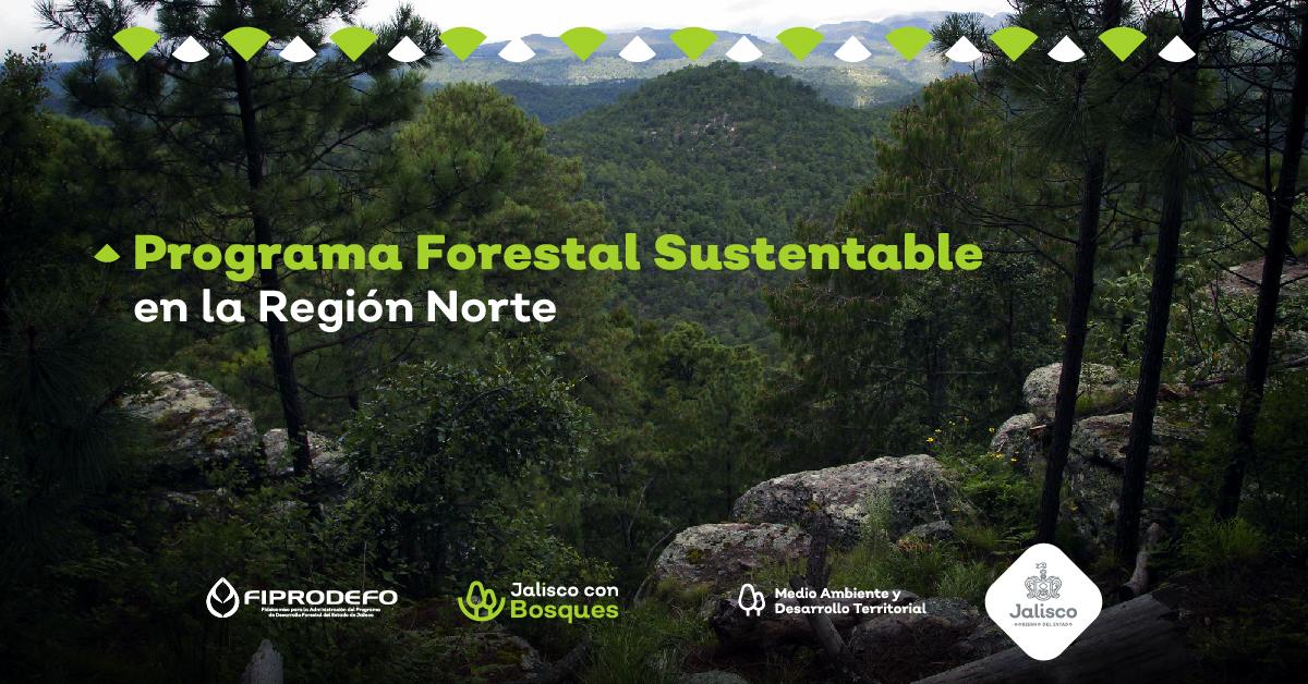 En conjunto con comunidades wixaritari y tepehuanas, se desarrolla el Programa Forestal Sustentable en la Región Norte
