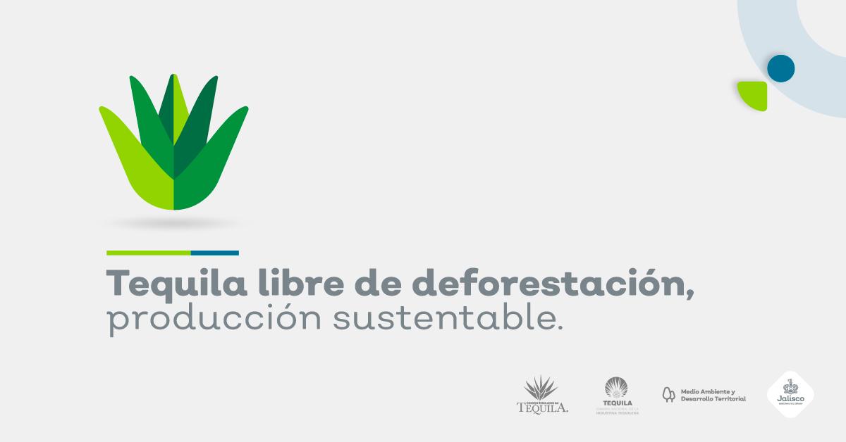Tequila libre de deforestación acciones ante el cambio climático
