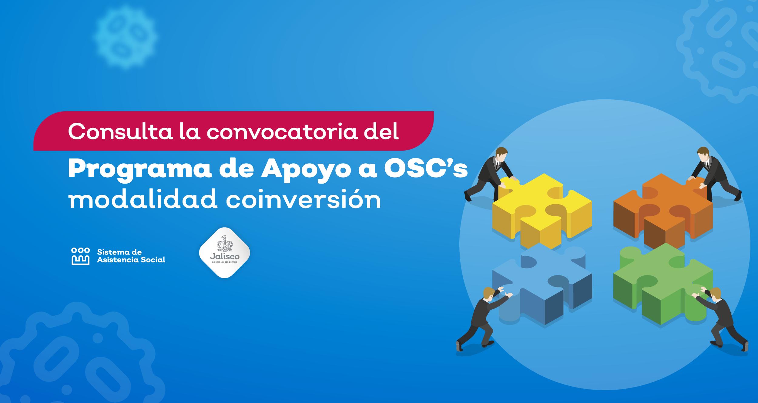Apoyo a OSC en la Modalidad Coinversión