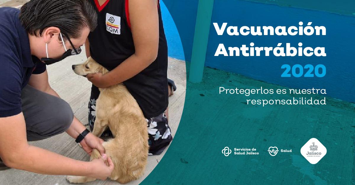 Vacunación Antirrábica 2020 Protegerlos es nuestra responsabilidad