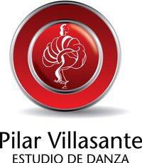 Función de Aniversario Estudio de Danza Pilar Villasante