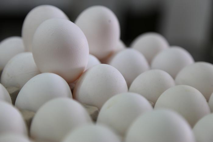 Imagen alusiva a la nota El huevo de rancho recobra su atractivo de alimento sano