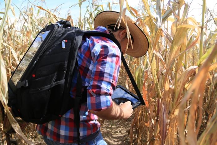 Imagen alusiva a la nota Retoma el campo de Jalisco el extensionismo rural