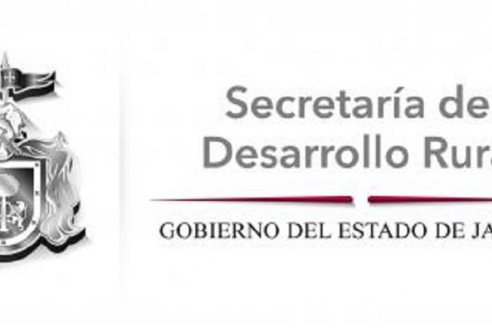 Imagen alusiva a la nota Jalisco avanza en la exportación de aguacate al mercado estadounidense