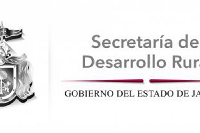 Imagen alusiva a la nota Jalisco, líder en exportación de semillas con alta calidad genética