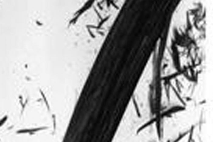Dibujo en lápiz donde una línea gruesa color gris se superpone a líneas pequeñas y dispersas en el fondo