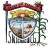 Escudo de armas de San Ignacio Cerro Gordo